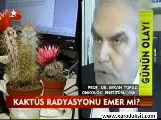 KAKTÜS RADYASYONU EMER Mİ