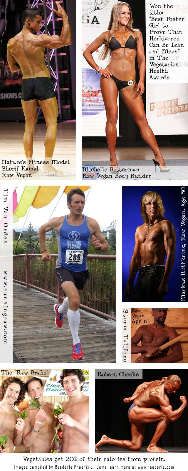 Raw Vegan Muscle Comes From Vegetables Poster compiled by Raederle